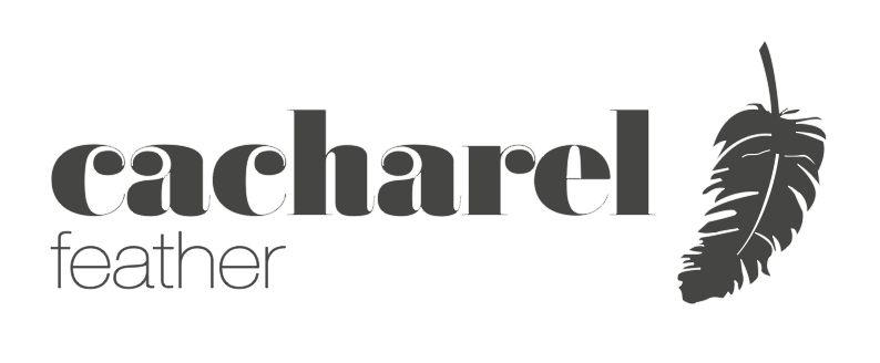 74d0e36671 Cacharel Feather Logo | LOGOLAR / LOGOS | Logos, Company logo, Tech ...