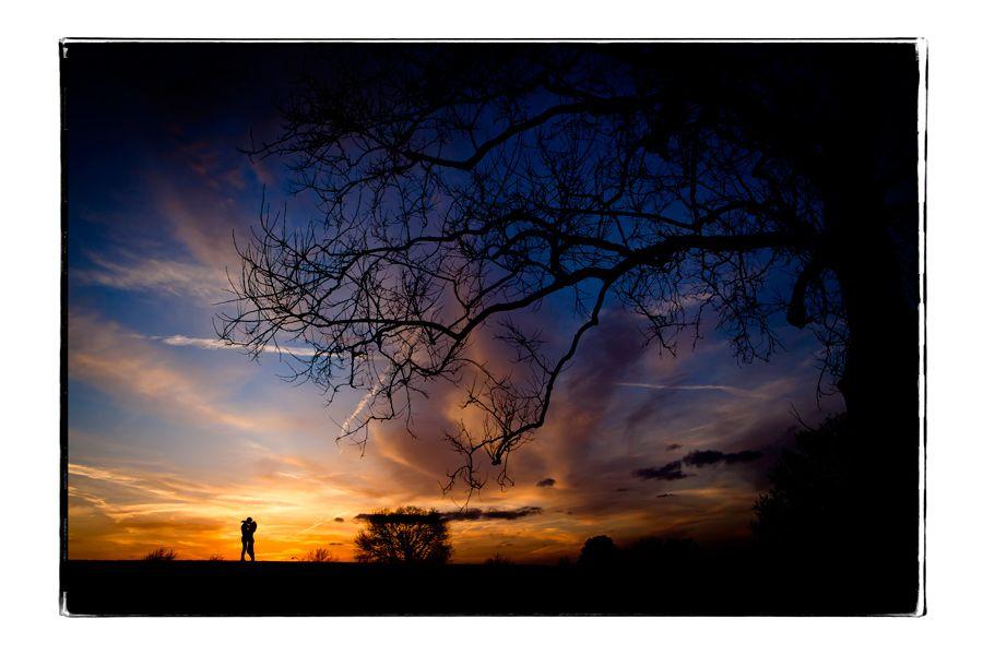 Steve Willis Photography - just beautiful!
