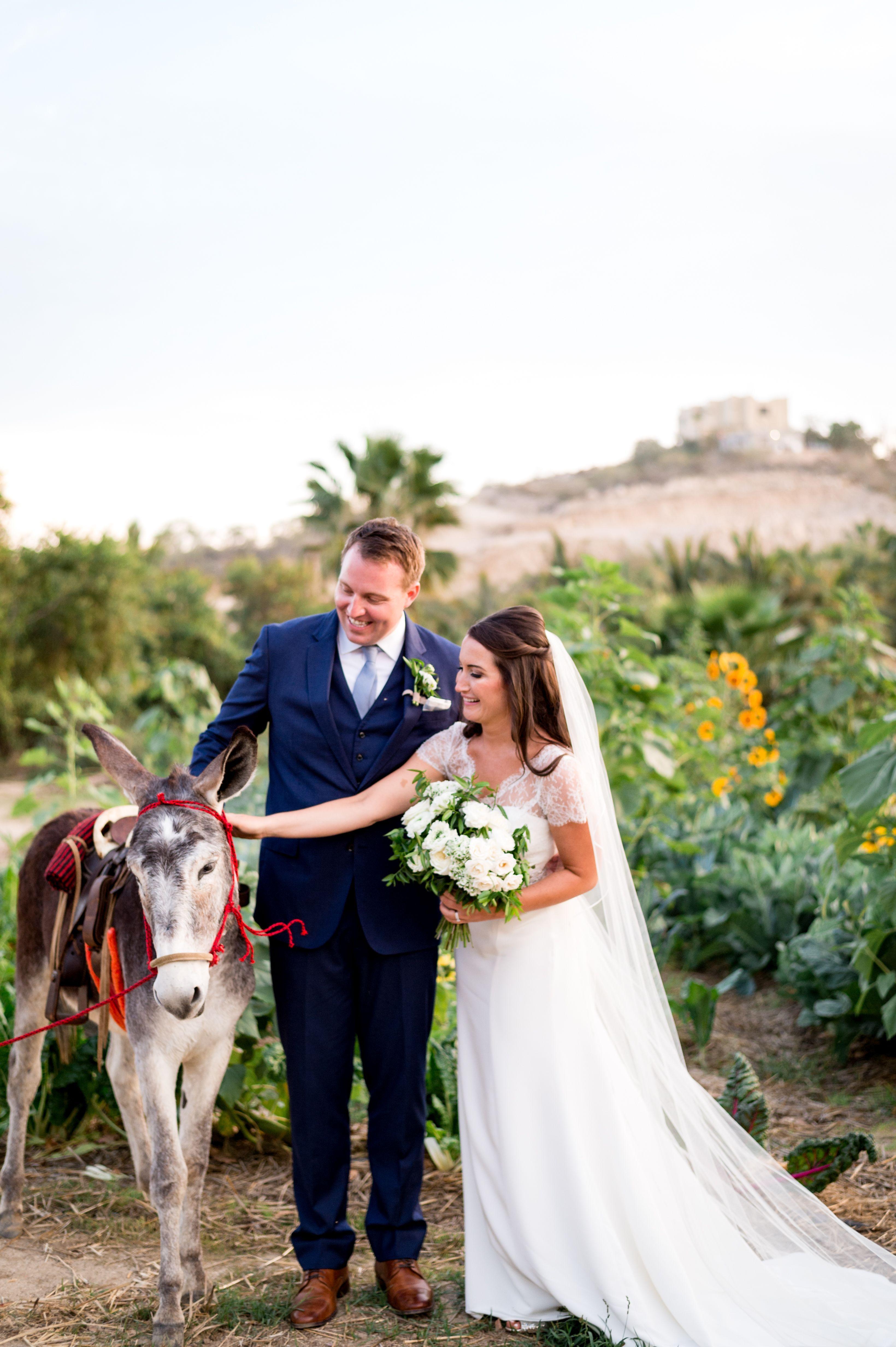 Joelle and henry los cabos wedding mexico destination wedding