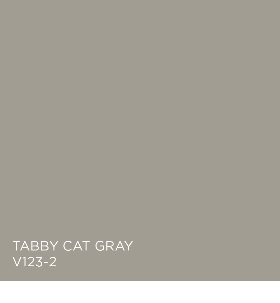 Tabby Cat Gray V123 2 Available At Independent Retailers House Paint Color Combination Popular Paint Colors Tabby Cat