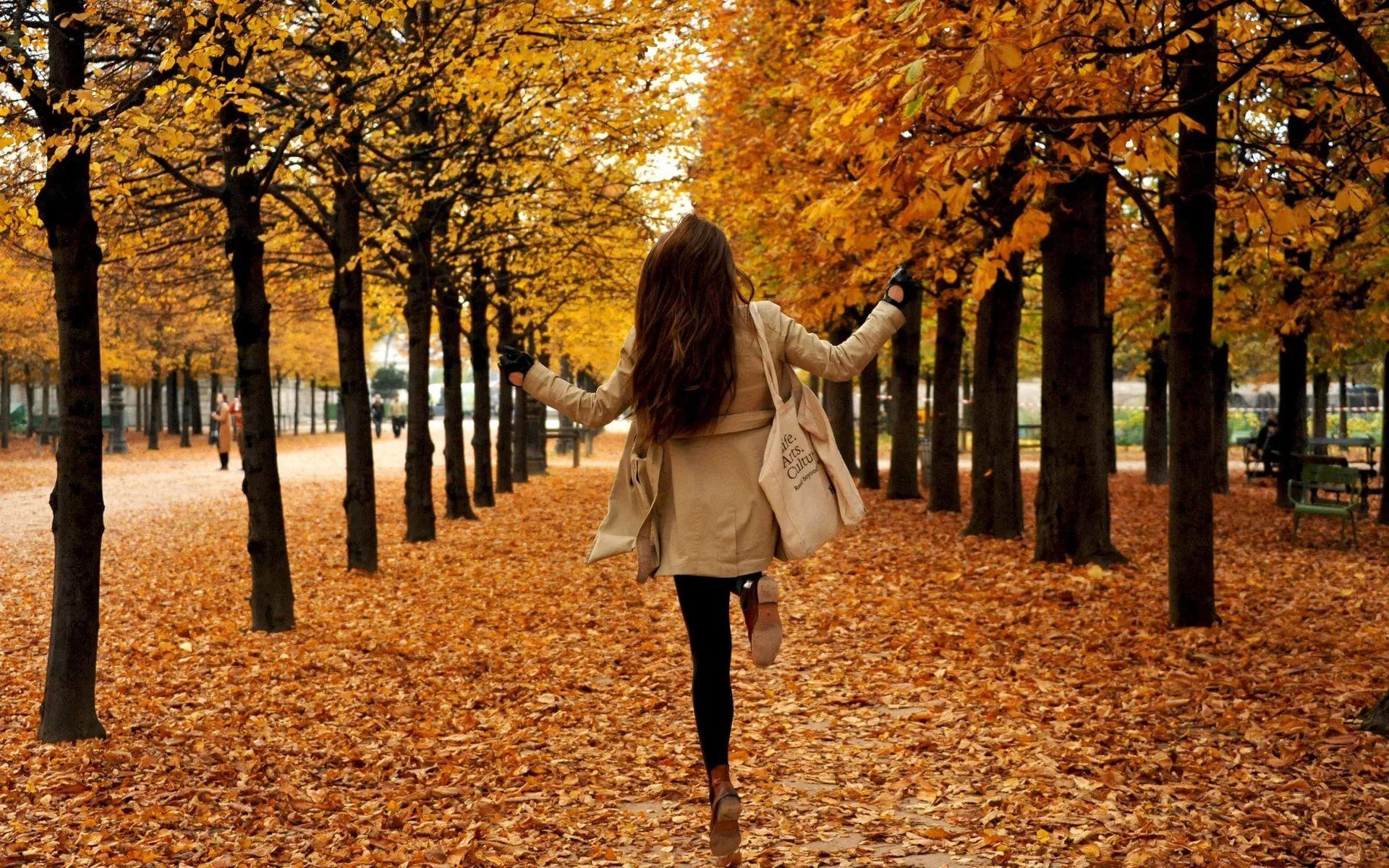 Картинка ава осень