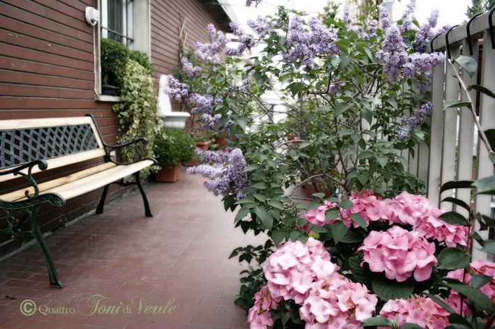 piante per balcone esposto a nord ovest - Cerca con Google | balconi ...