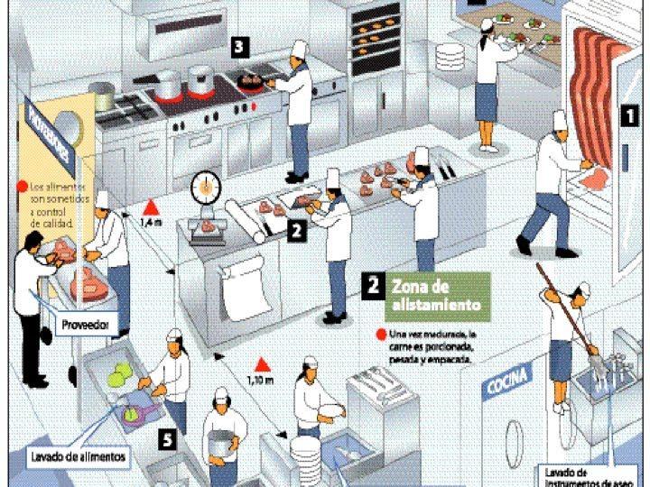 Dise o de restaurantes cocinas industriales critter for Medidas de cocina industrial