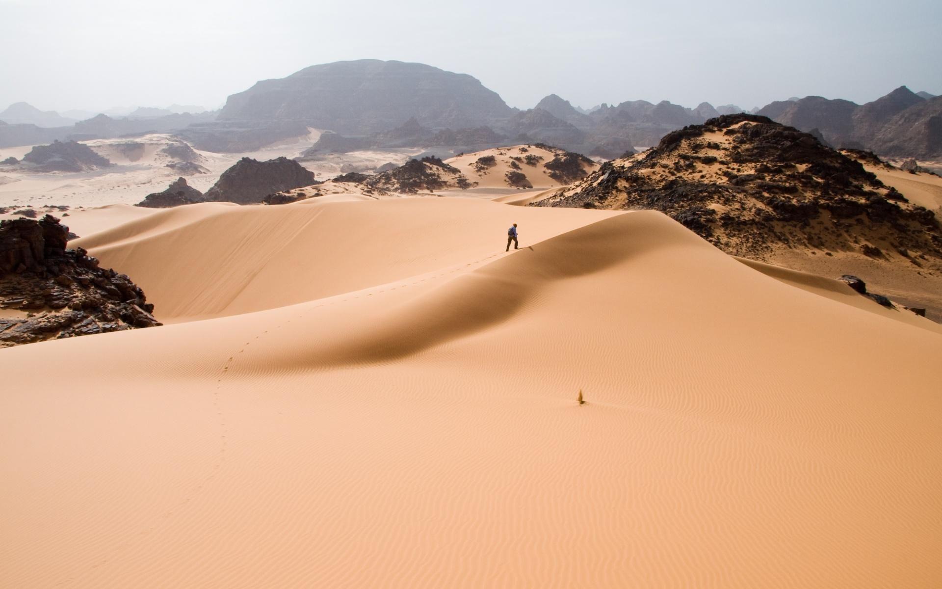 Travelling Through The Desert Natuur Libie Reizen