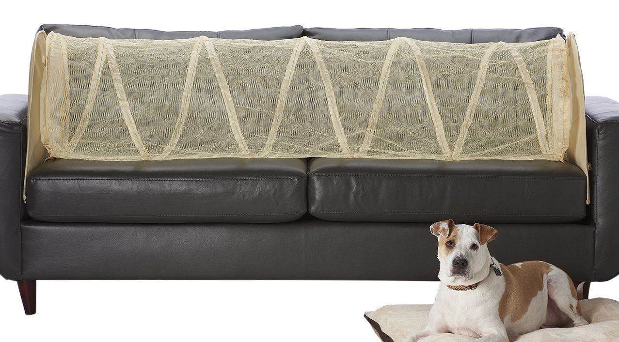 Couch Defender Keep Pets Off Of Your Furniture