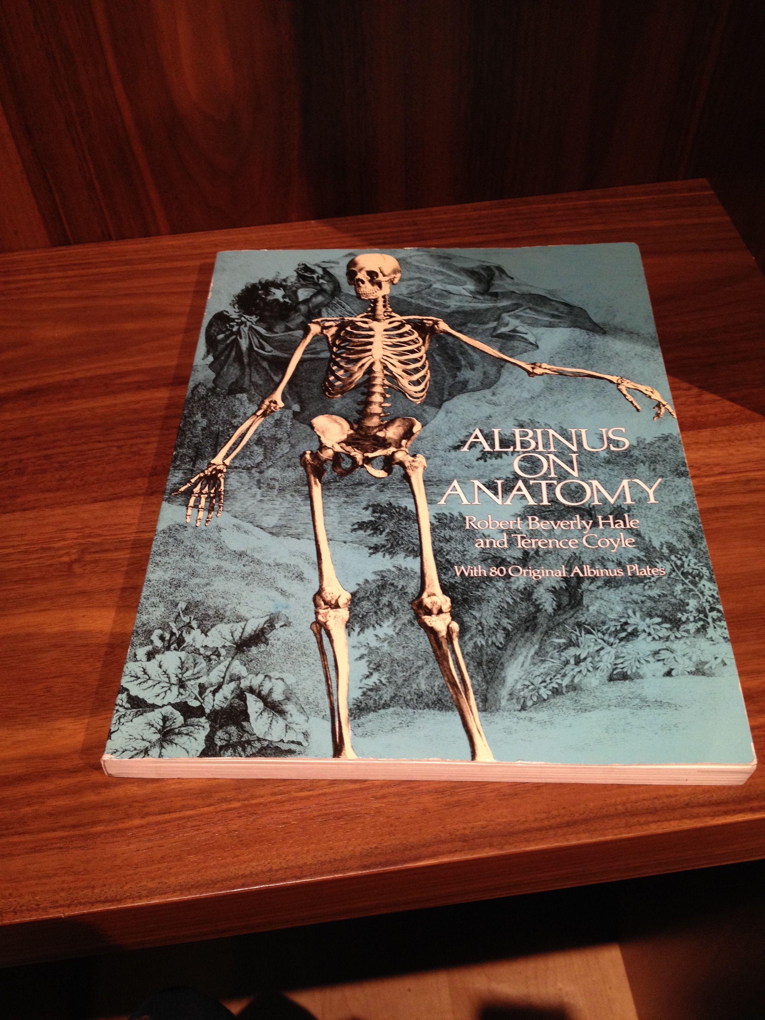 Albinus on Anatomy | Albinus, Bernardo Siegfried | Pinterest