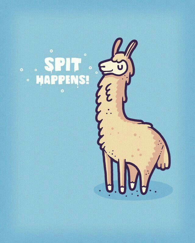 Kids Hoodie Alpaca Funny Pun Chill Punny Gift Animal No Drama Llama