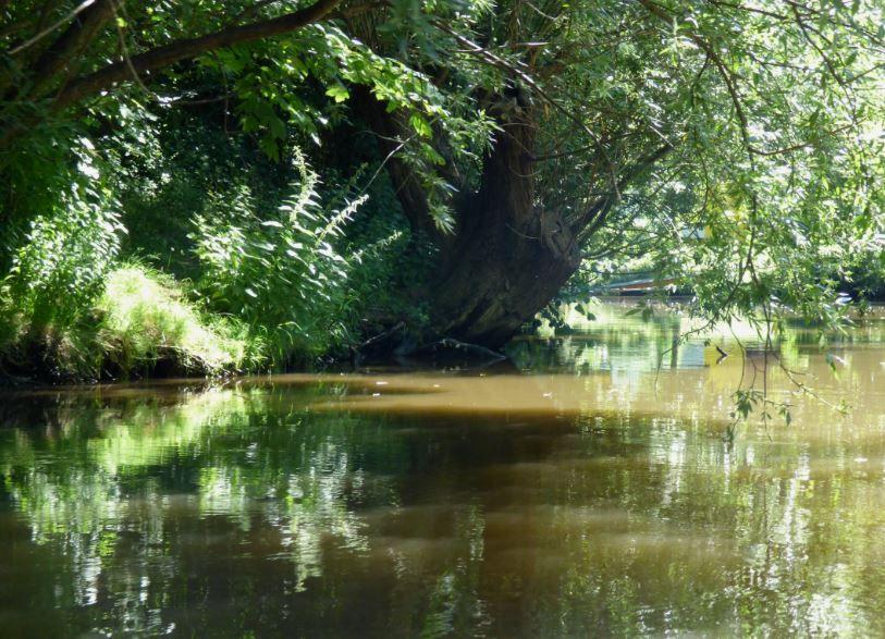 Leipzig Fluss grüner fluß leipzig leipzig