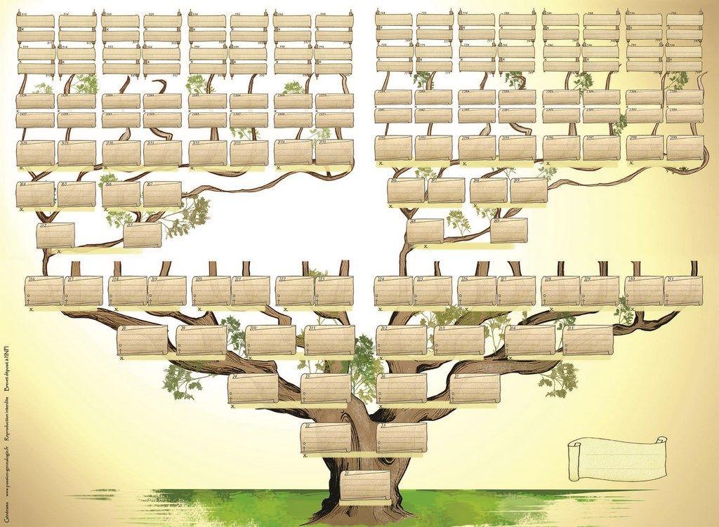 Le g n rama est un arbre genealogique vierge genealogy family genealogy genealogy forms - Arbre genealogique dessin ...