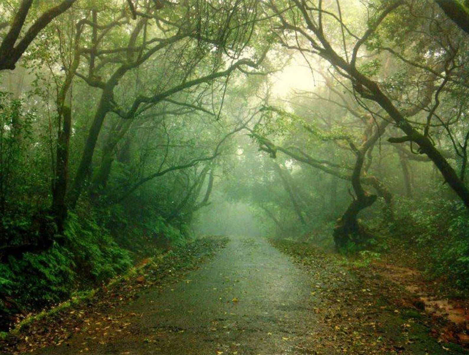 Short Trip Destinations from Kolkata ~ Just For Fun, Sharing and Knowledge.............