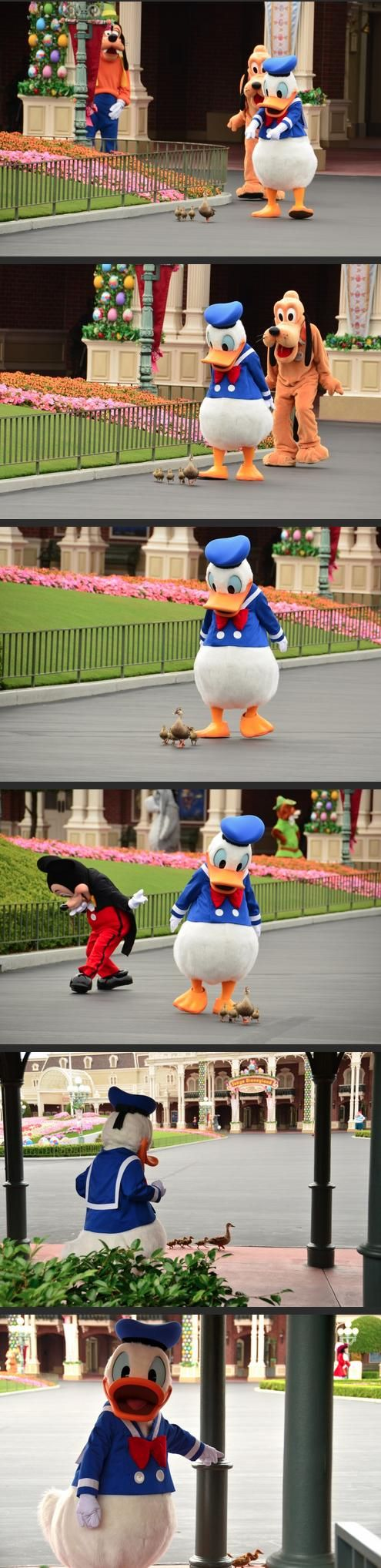 Disney is a Magical Place (30 Pics)