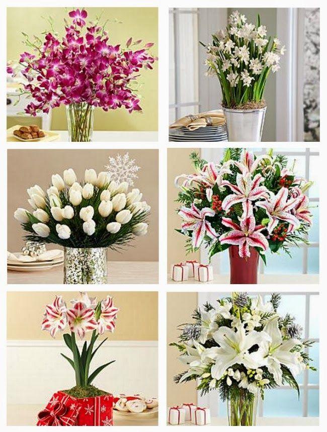 Calling It Home When In Doubt Send Flowers Flowers Send Flowers Favorite Things Gift