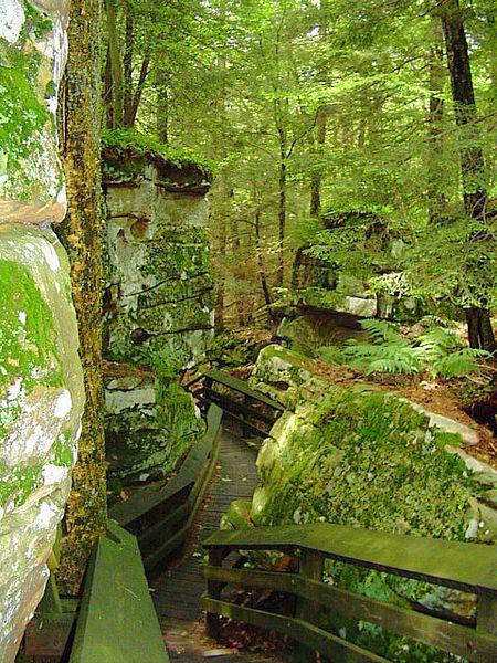 Best 25 West Virginia Tourism Ideas On Pinterest West