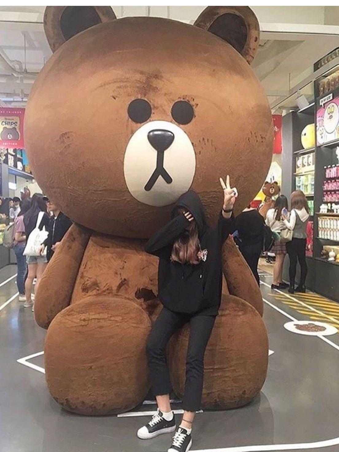 Картинки корейский медведь