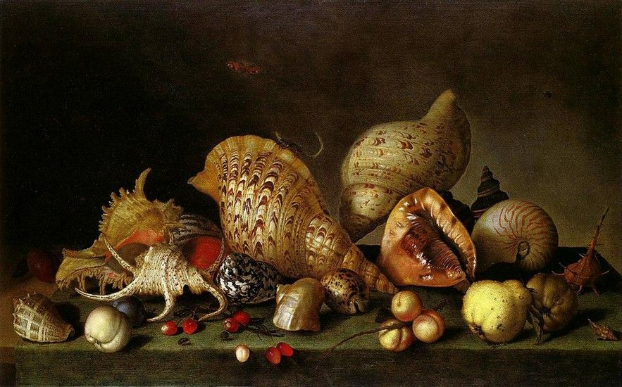 Balthasar van der Ast (1593/94-1657) — Still Life with Fruit and Seashells  (833x550)