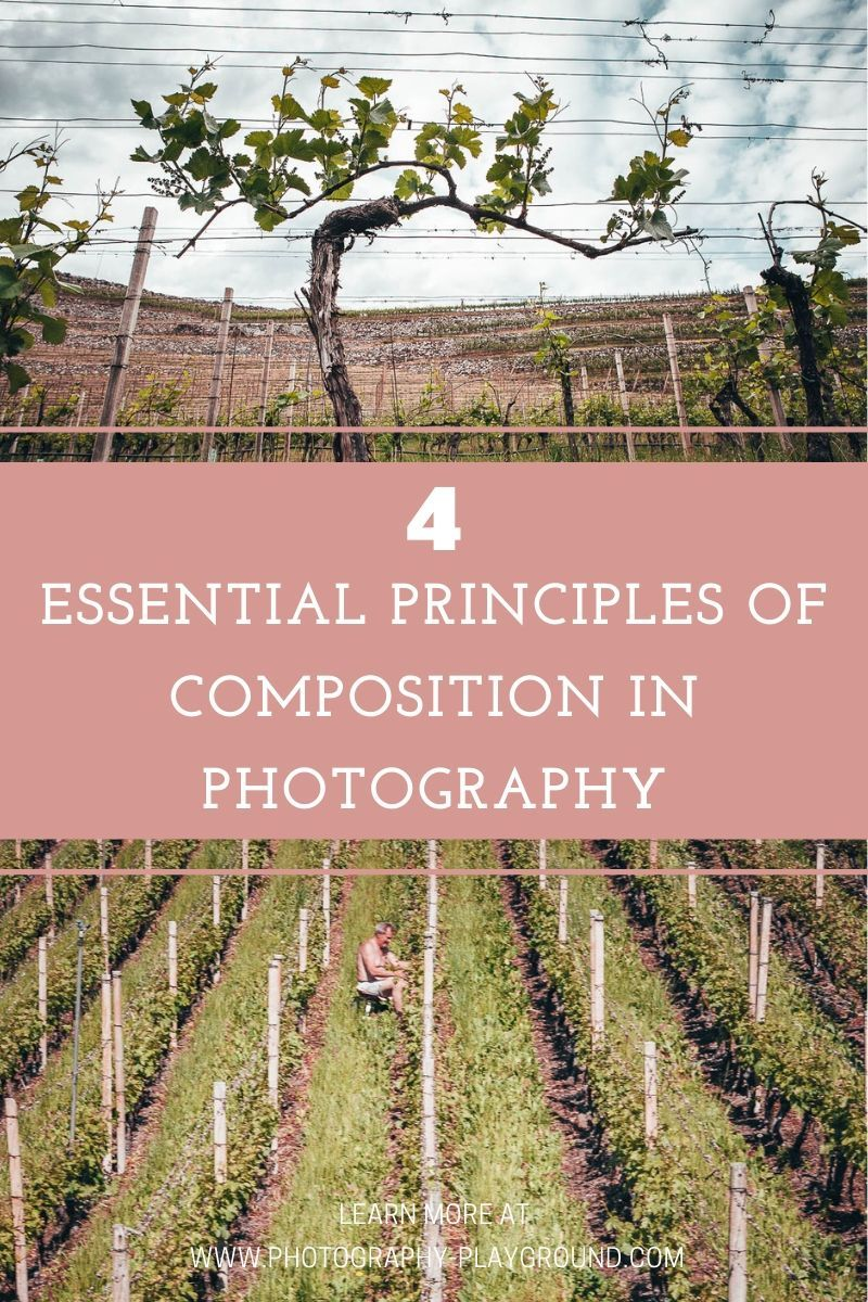 4 Essential Principles of Composition in Photography | Go beyond the simple rules of composition in photography and discover the underlying principles of the rule of thirds, leading lines and negative space in this photography composition tutorial. Click through to learn how to create depth in your photos and explore new photography composition ideas and tips. #photocomposition #ruleofthirds #leadinglines #compositiontips