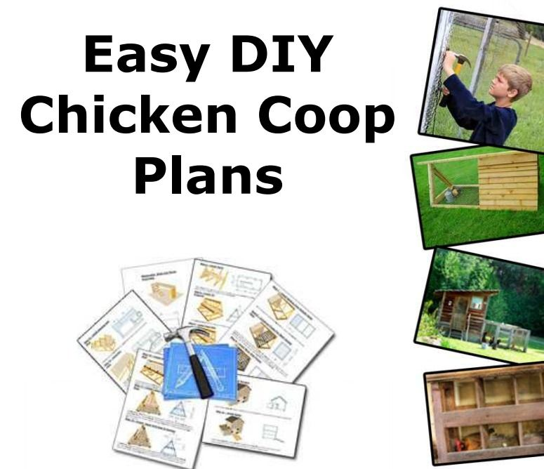 PDF - easy plan for 4-5 chickens