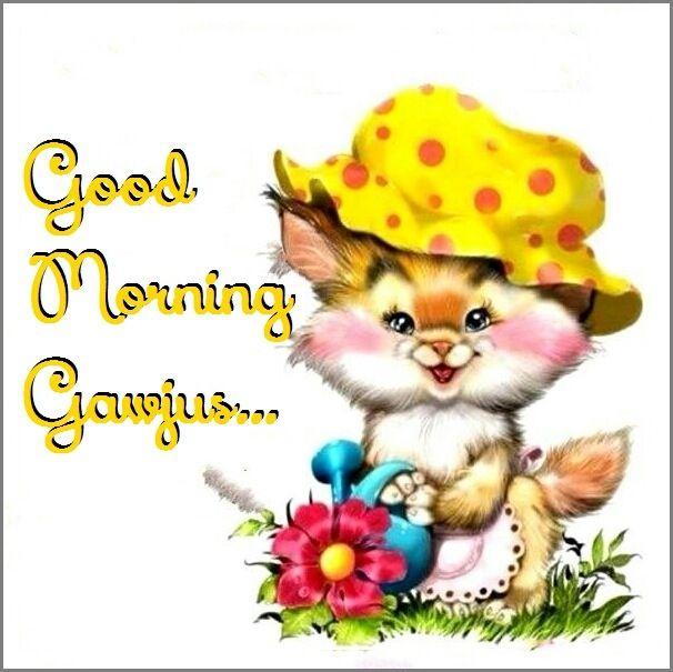 Kitten Cartoon, Kitten Images, Winnie The Pooh