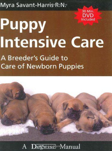 Robot Check Newborn Puppies Puppies Intensive Care