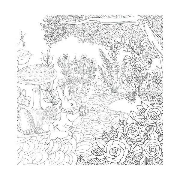 韓国のぬりえ本 リメンバー アリス 大人の塗り絵 カラフルな絵 塗り絵 ぬり絵