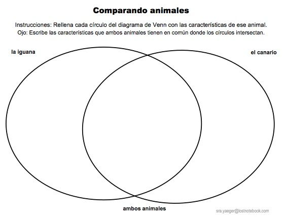 Compare And Contrast The Two Animals In The Spanish Using The Venn