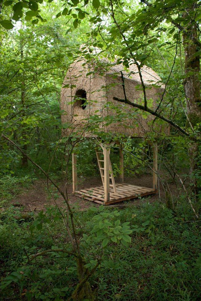 Cabane De La Reserve De Doussard En Haute Savoie Par Atelier 1 1 Cabane Habitats Naturels Et Haute Savoie