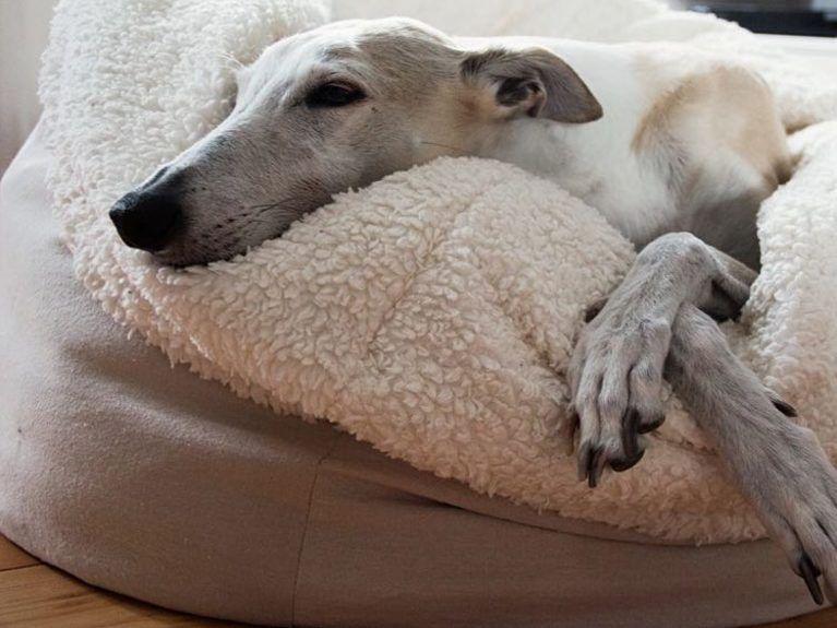 tutoriel diy coudre un panier pour chien tout doux via for the pups pinterest. Black Bedroom Furniture Sets. Home Design Ideas