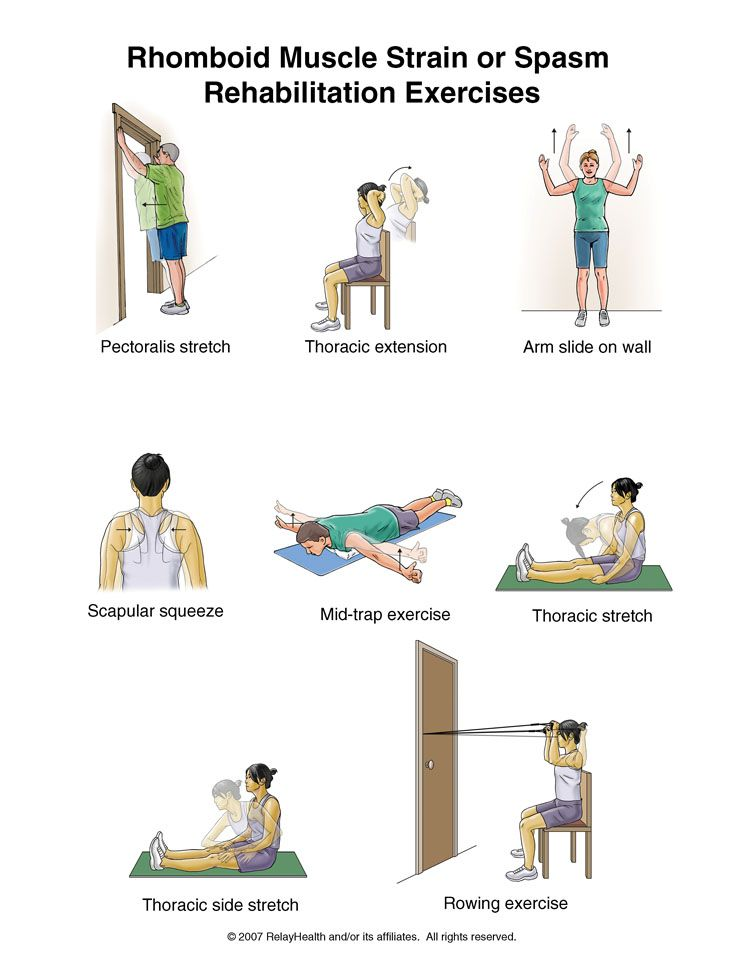 Mid Back Pain Rehabilitation Exercises Exercises Muscle
