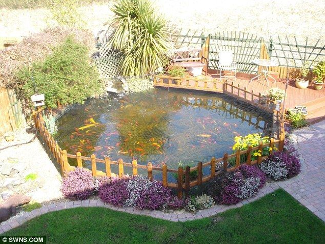 One Of Our Ponds Ponds Pinterest Pond Fences And
