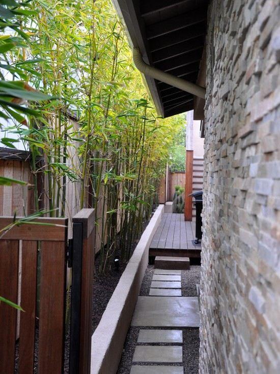 modernes haus gehweg bambuspflanzen kies steinplatten | garten ...