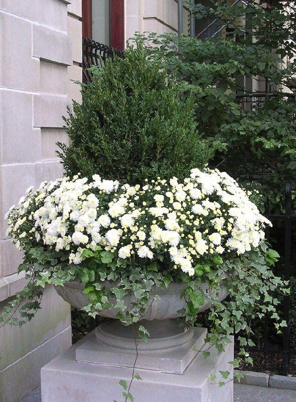 Most Beautiful Fall Planter Ideas 56