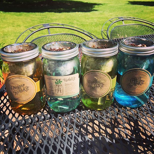 Mason Jar Indoor Herb Garden   Hydroponic Grow Kit (With ...