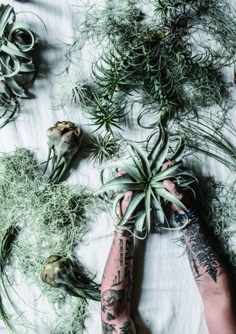 GREEN FINGERS SATOSHI KAWAMOTO EXHIBITION 'HERE AND THERE'
