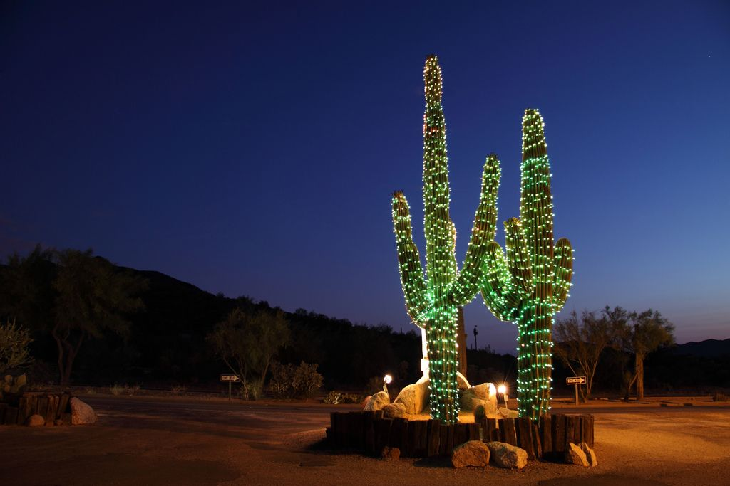 Christmas Tree In The Desert.10 Ways To Celebrate Christmas In Arizona