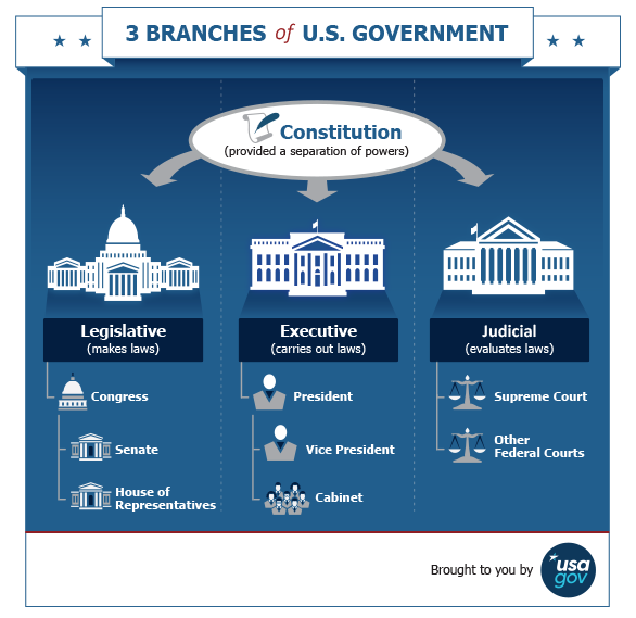 Politics Government: 3 Branches Of U.S. Government Infographic