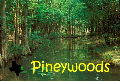 piney woods hindu single men America's largest black boarding school sends 97  the piney woods country  the 17-year-old honors student was raised by a working single mother in .
