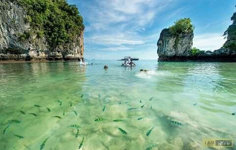 koh hong (เกาะห้อง) พื้นทรายขาวสะอาดน้ำใสเห็นตัวปลา  Krabi,Thailand