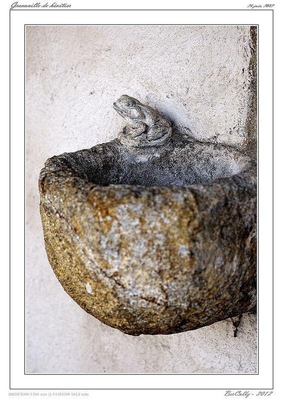 Grenouille de bénitier [Orléat - Puy de Dôme]