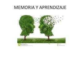 F.C.07. Los  recuerdos y la enseñanza van de la mano, con ellos podemos forjar nuestro futuro.