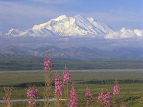 Denali-Alaska