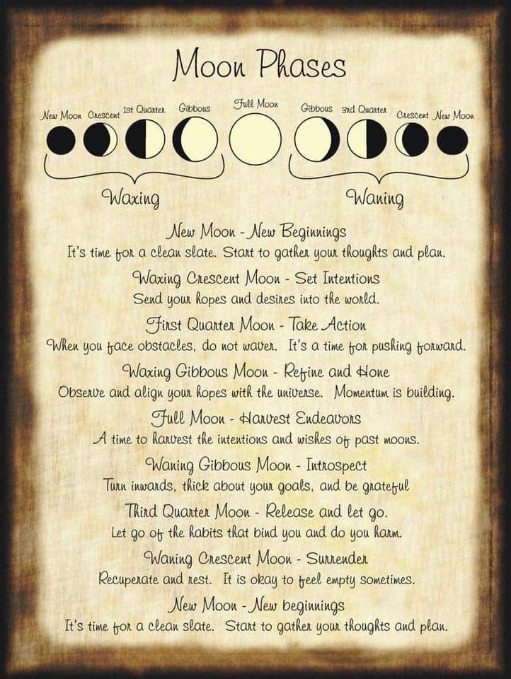 Magick On Halloween 2020 Pin by bibi on Magick shop in 2020 | Halloween spell book, Spell