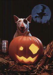 halloween a happy halloween