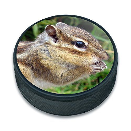 Chrome Plated Metal Small Pet Id Dog Cat Tag Zodiac: Ice Hockey Puck Animals - Chipmunk Eating