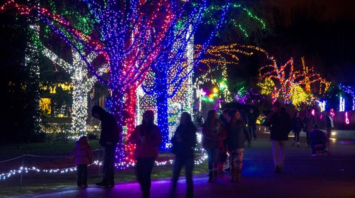 Wildlights At Woodland Park Zoo Holiday Lights Display Holiday Lights Christmas Lights
