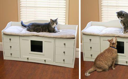1000 images about cat litter box on pinterest hidden litter boxes cat litter boxes and litter box cat litter box cabinet