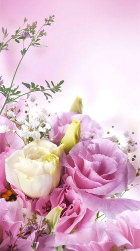 Natural flowers - бесплатно скачать живые обои на Андроид ...