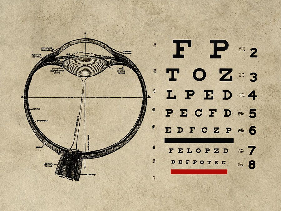 Vintage Ophthalmologist Eye Chart Digital Art By Flo Karp Anatomy