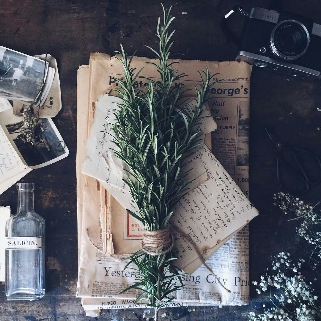 Collections...... #herbs #rosemary   Magic aesthetic, Witch ...