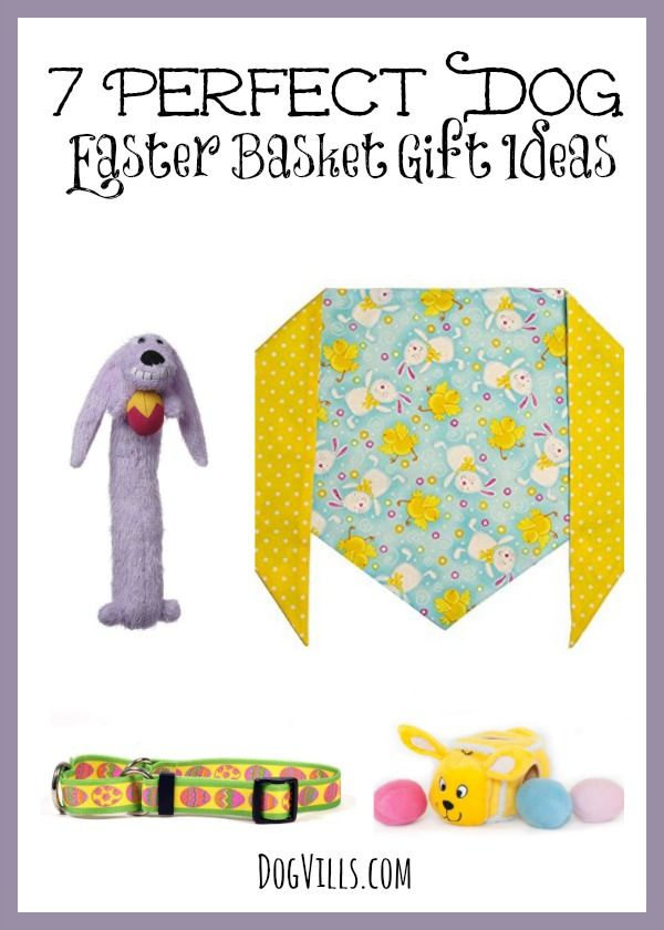 7 perfect dog easter basket gift items dog vills basket gift 7 perfect dog easter basket gift items treat your pup to one or all of negle Images