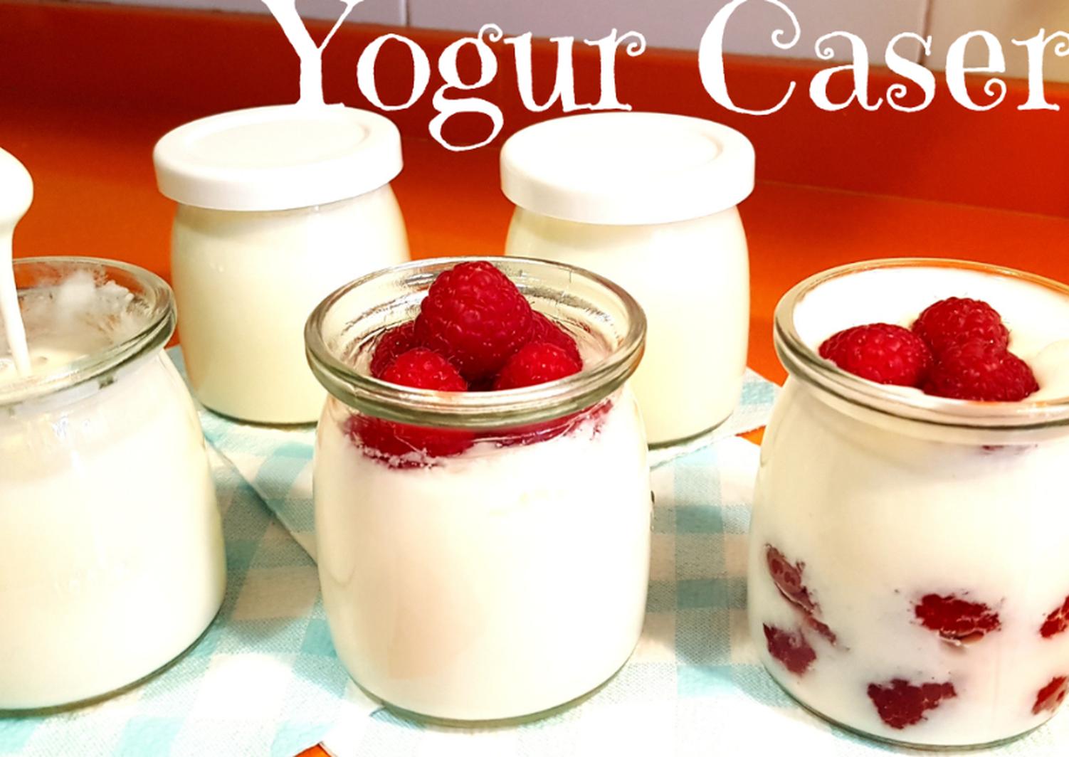 Como Hacer Yogur Casero En Yogurtera Receta De Rebeca De My House Land Receta Como Hacer Yogur Casero Yogur Casero Yogurt Casero